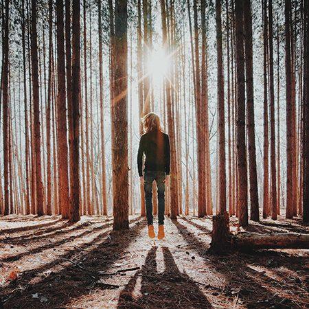 Mindfulness vervolg weekend veluwe